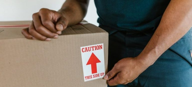 Greenpoint mover holding moving box